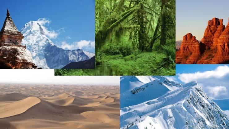 أنواع البيئات وخصائصها