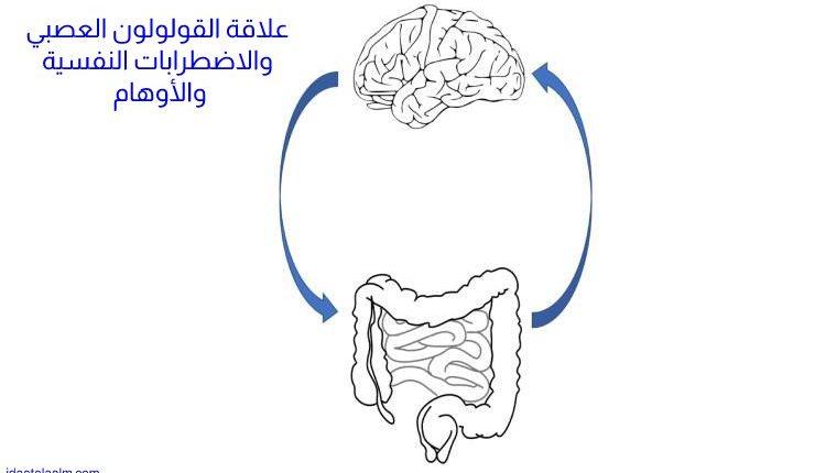 علاقة القولون العصبي بالاضطرابات النفسية والأوهام